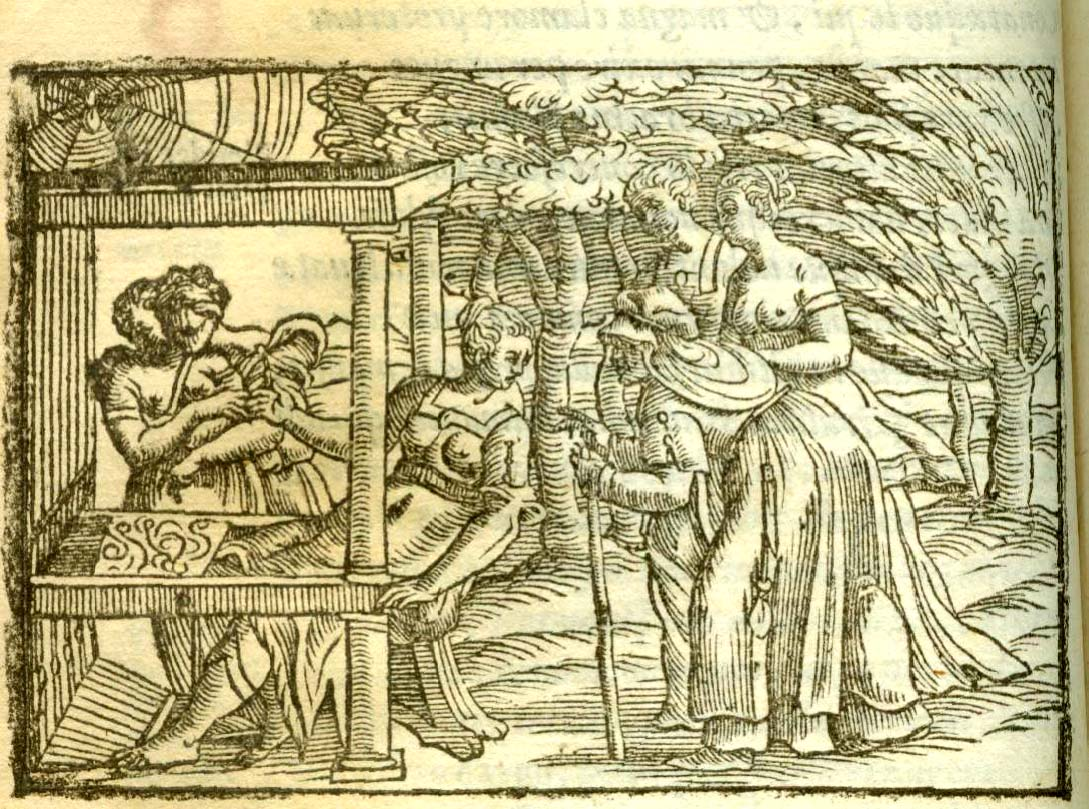Arachne tkająca Ovidii Metamorphoseon Libri XV (Ioannes Gryphius 1556)
